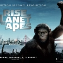 Rise of the Planet of the Apes Poster